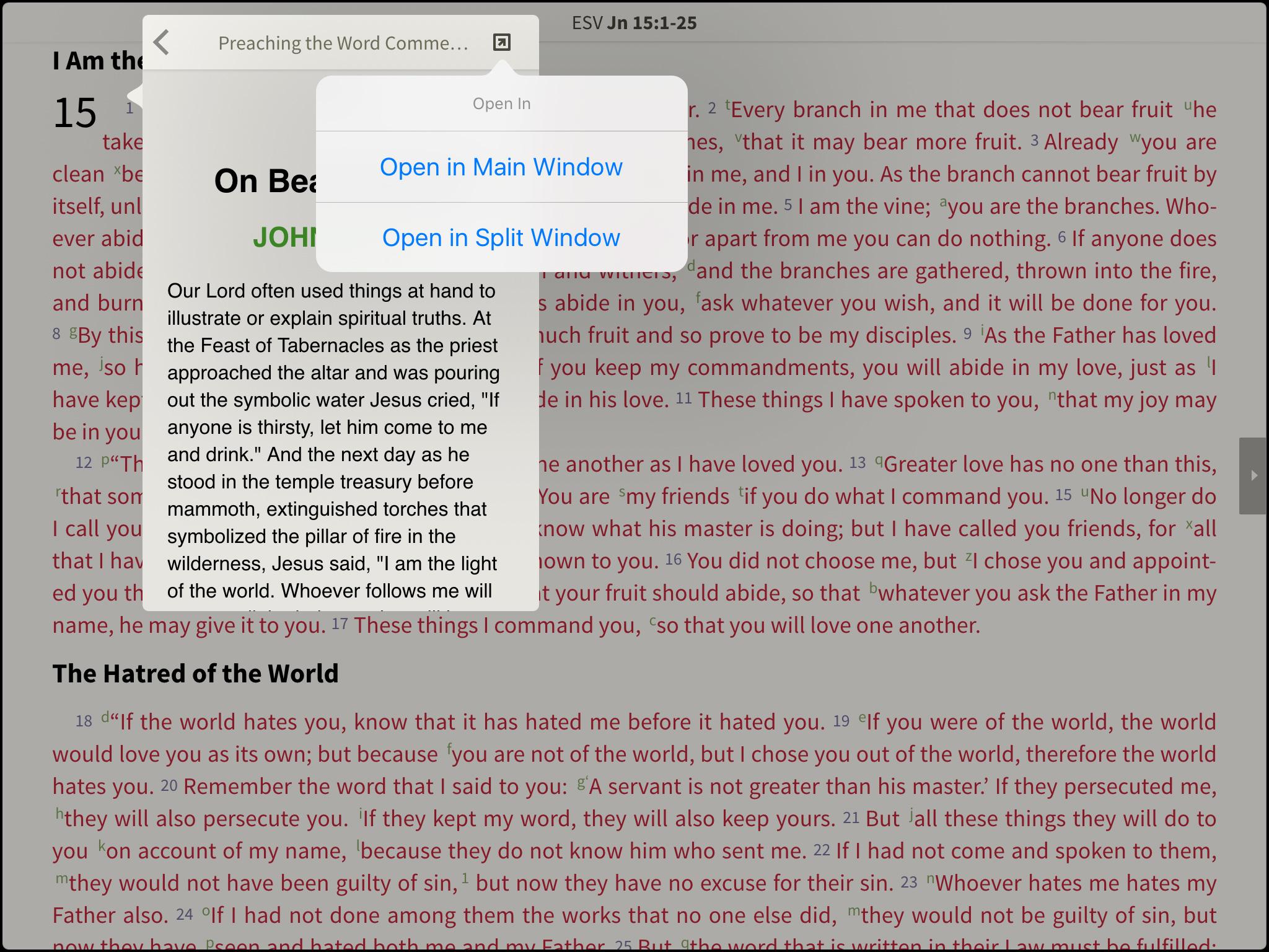 essay bible verse