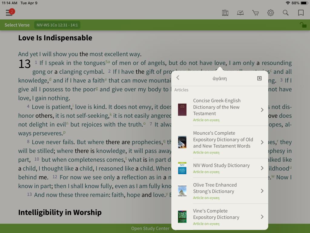 NIV Word Study Bible original language look up