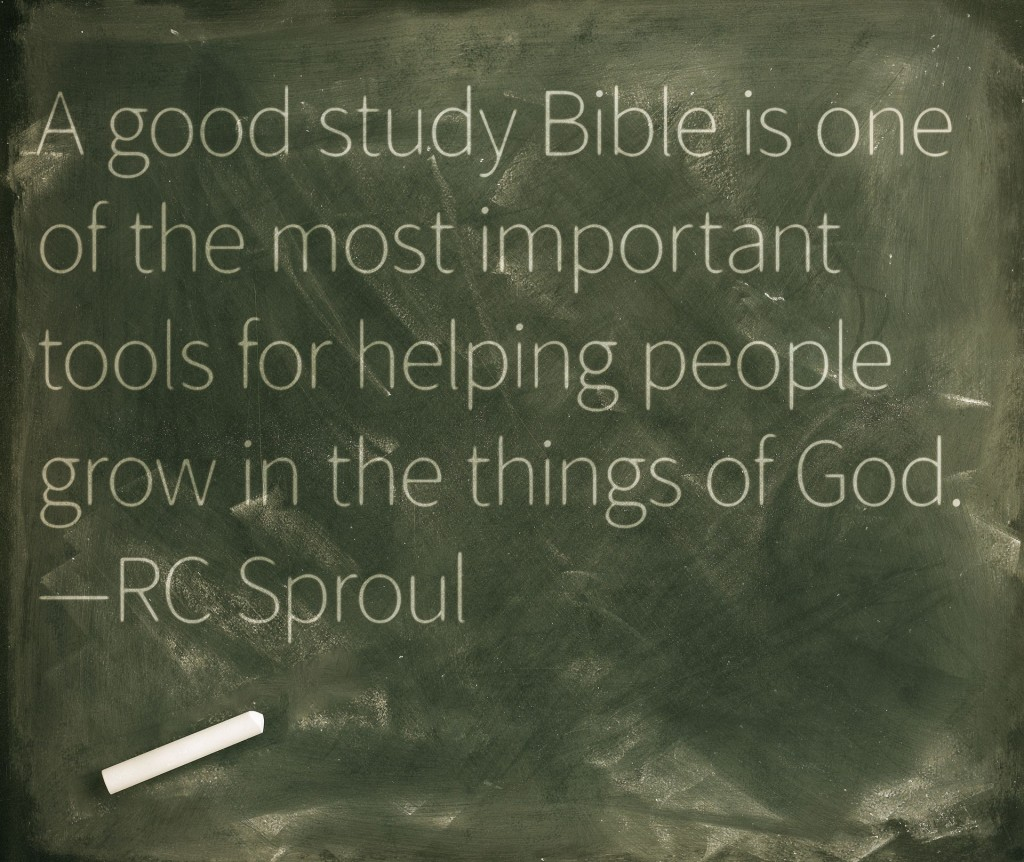 study-bible-quote