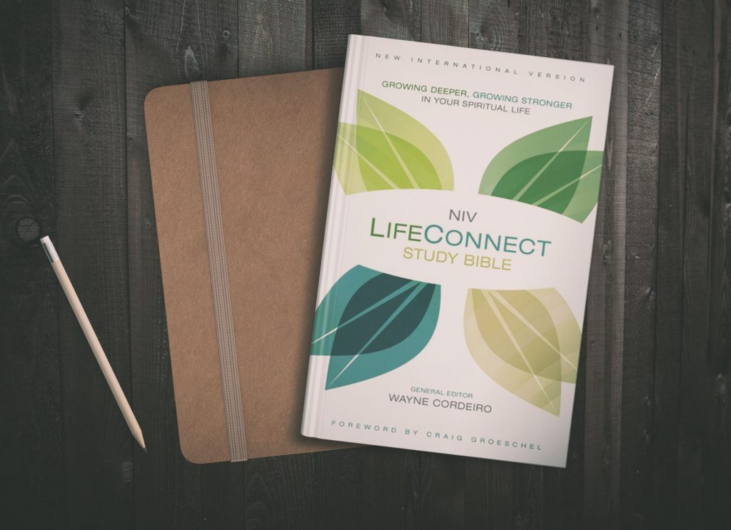 lifeconnect study bible cordeiro