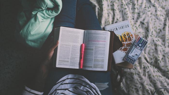Study Bibles- ESV, NIV, KJV, NKJV, NLT, & More ...