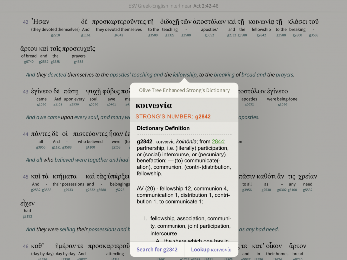 interlinear bible English tagged words