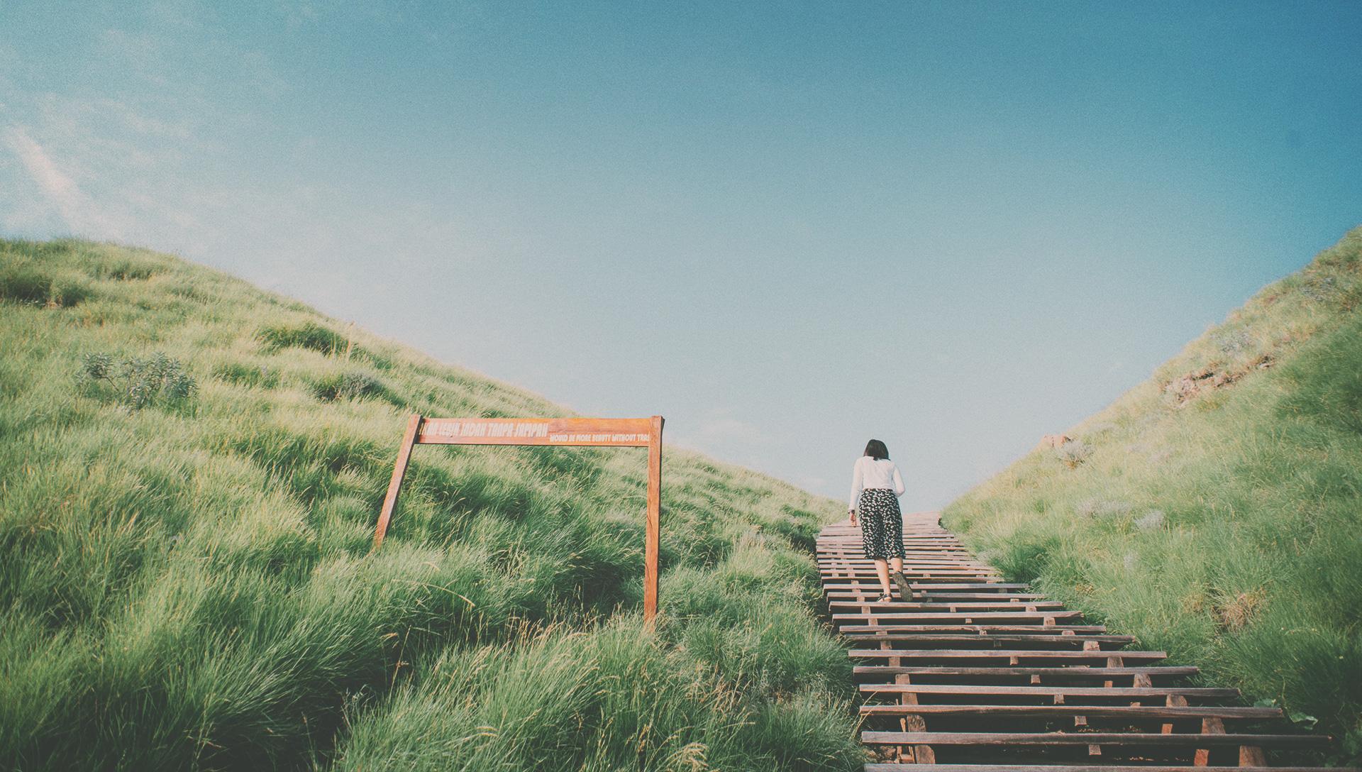 Biblical Theology: Traversing Terrain