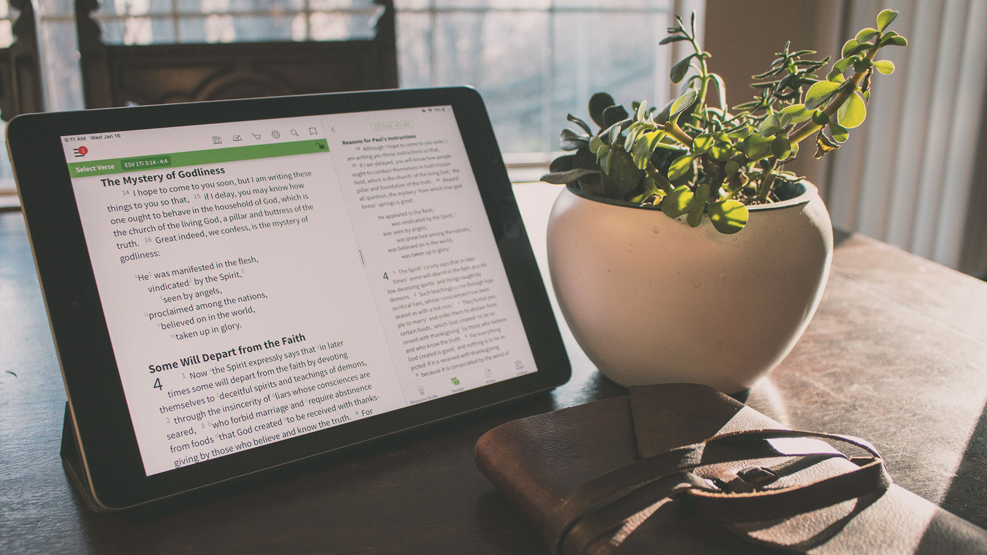 7 Step-by-Step Bible Study Methods - Olive Tree Blog