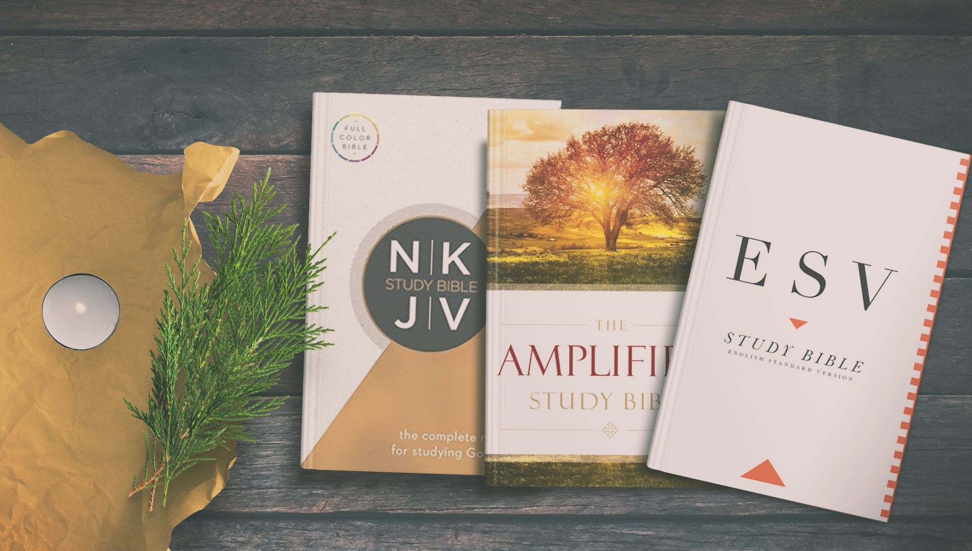 Olive Tree Year in Review: Study Bibles