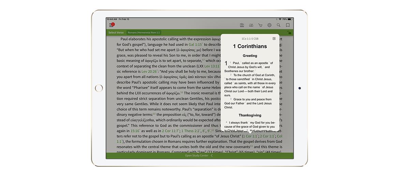 Digital Does It Better - Olive Tree Blog