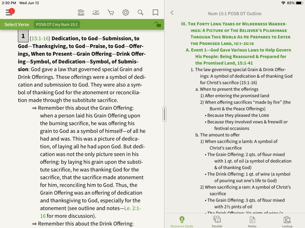 Review Preacher's Outline & Sermon Bible Commentary
