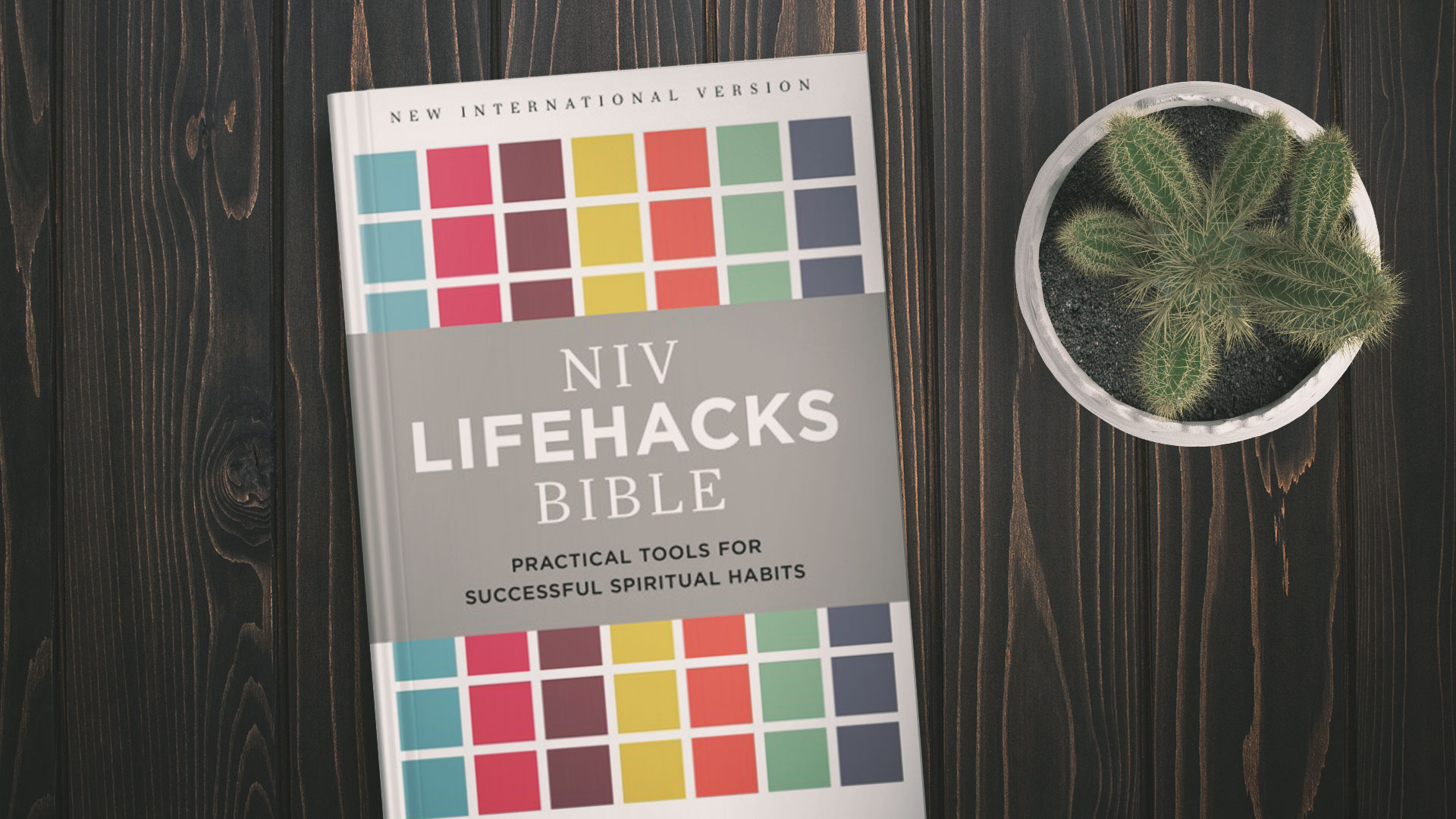 NIV Lifehacks Bible