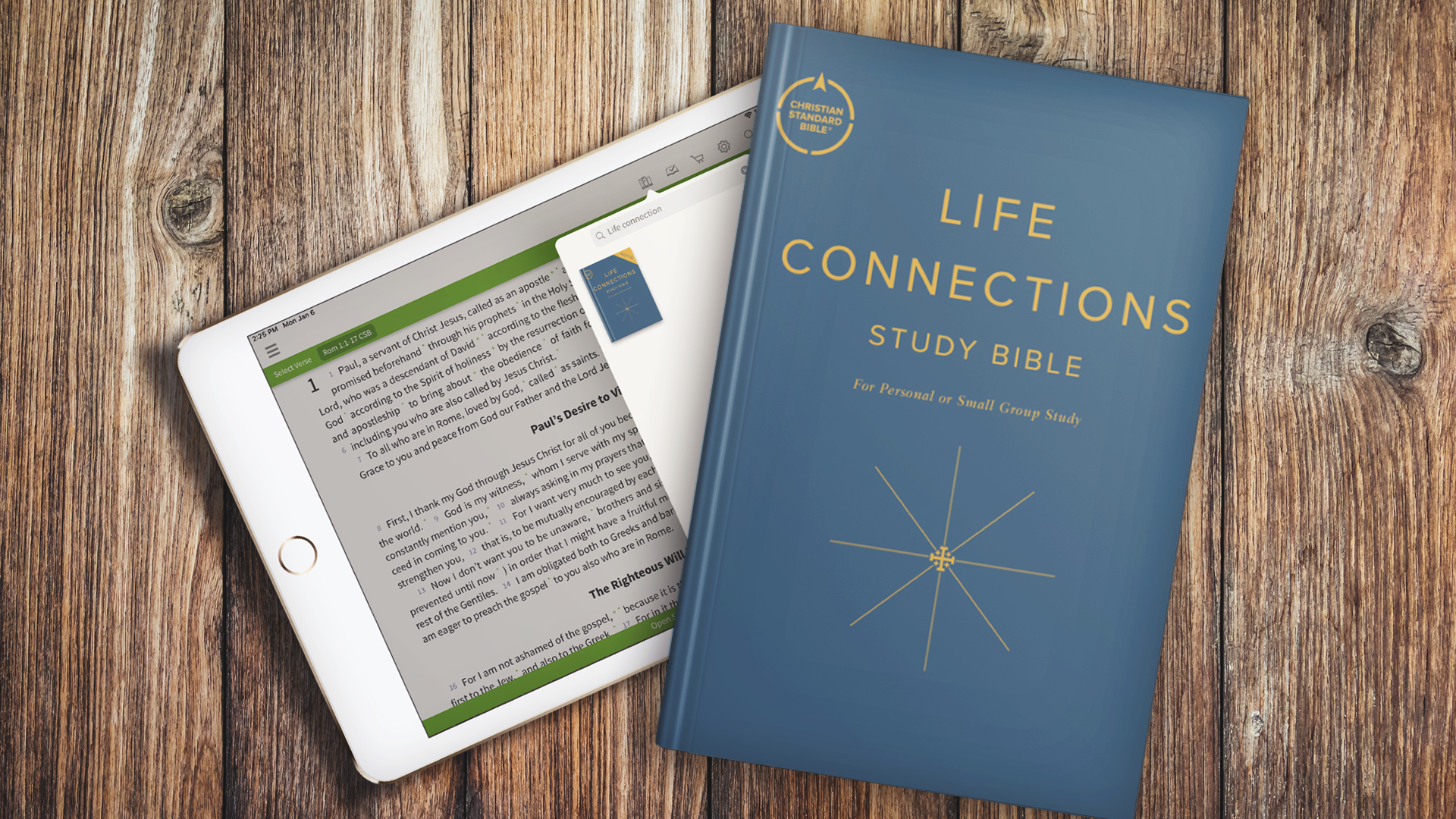 Life Connections Study Bible