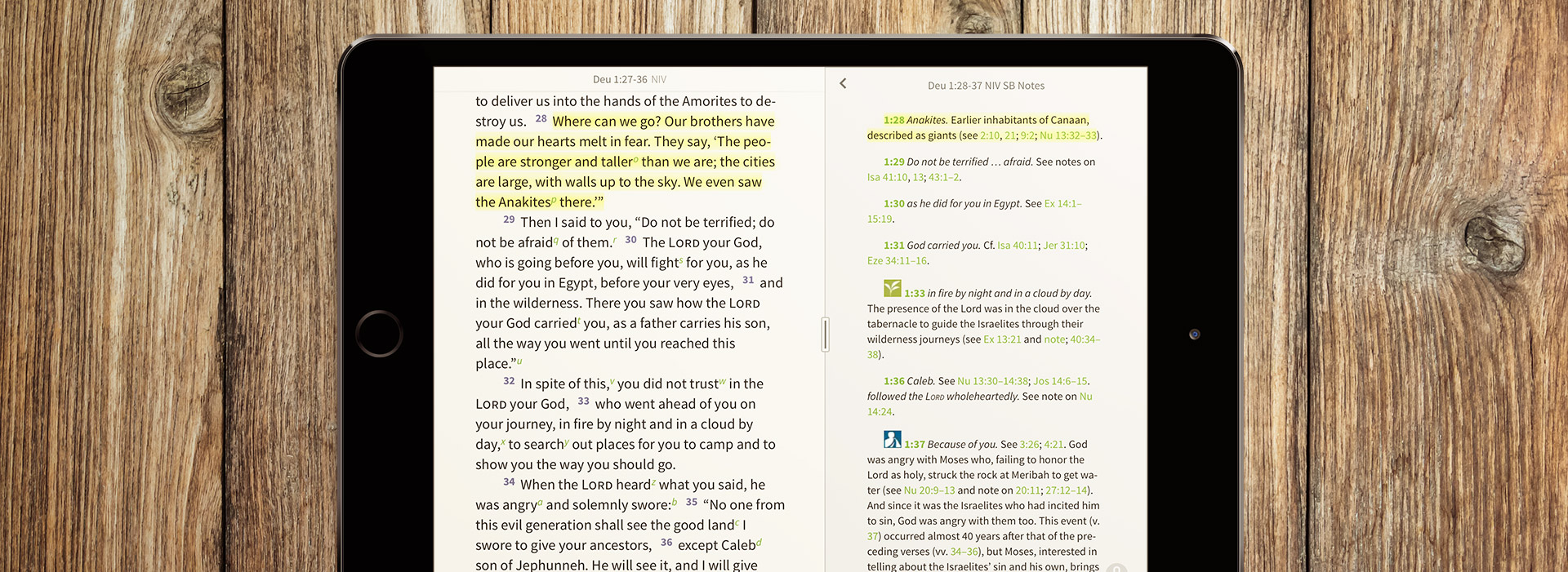 Note on the Anakites in the NIV Study Bible Notes