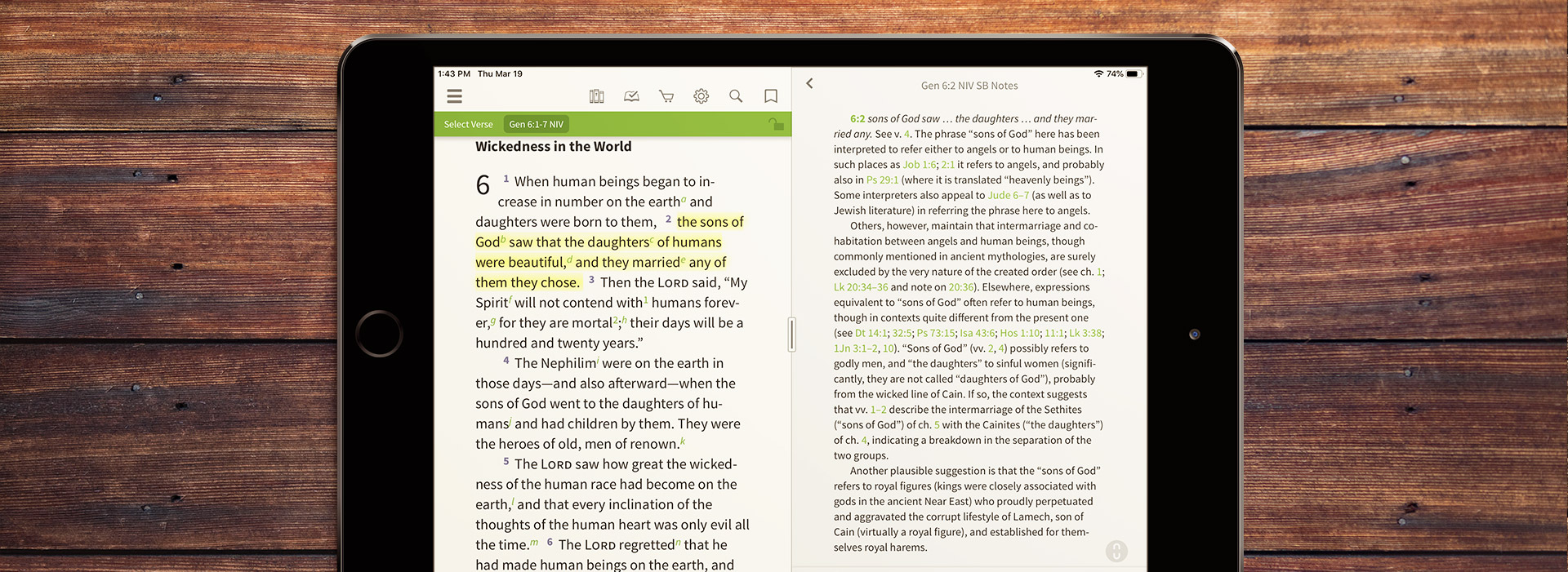 A long note from the NIV Study Bible on Genesis 6:2, the sons of God.