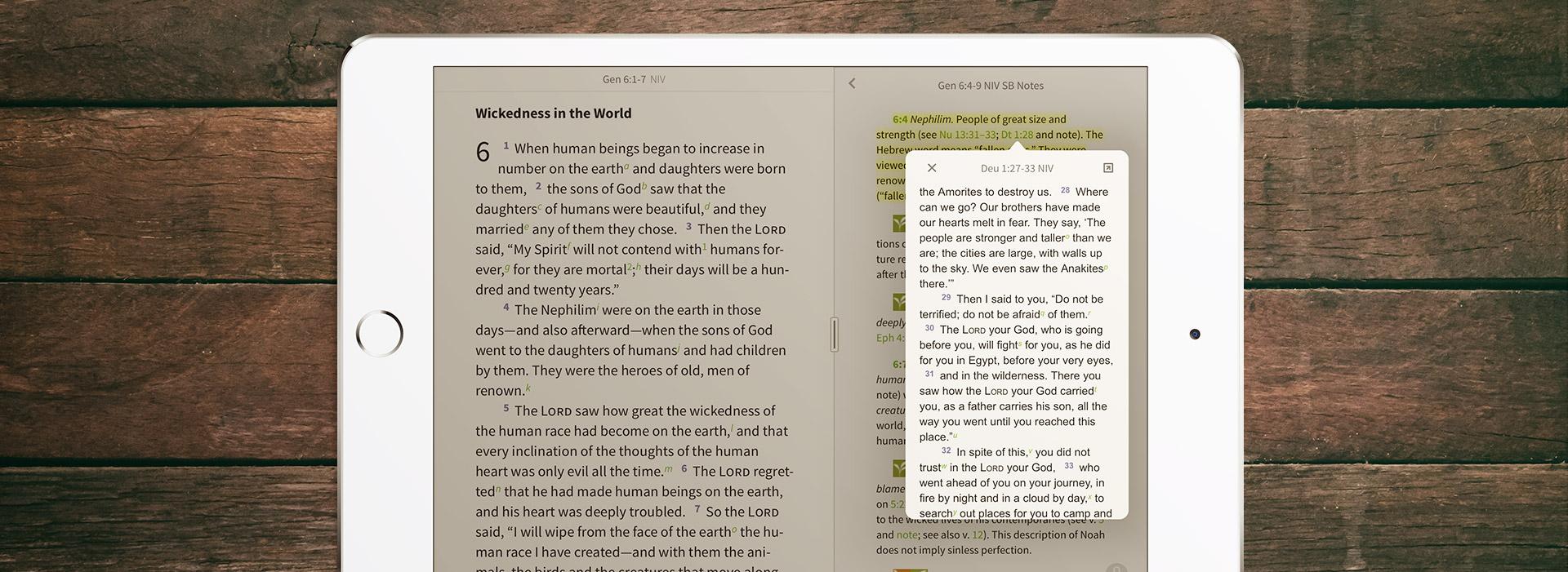Pop up window in the Olive Tree Bible App