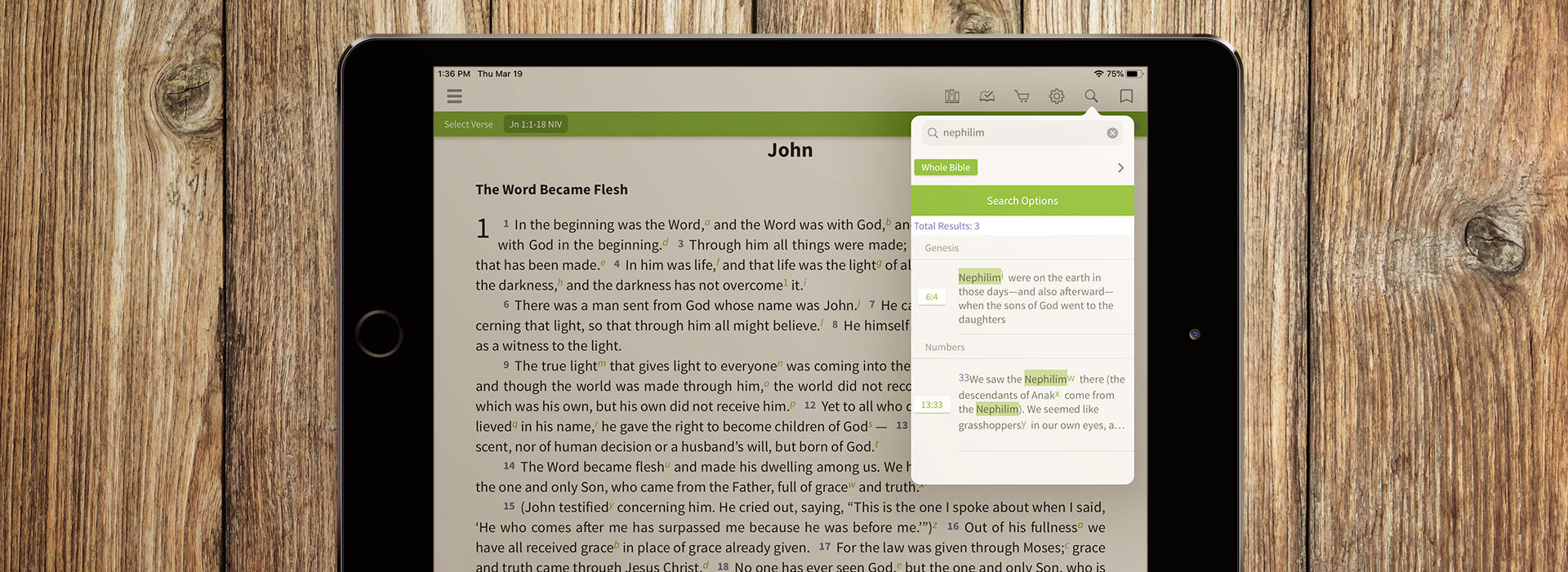 Olive Tree's Search feature looking for nephilim on an iPad