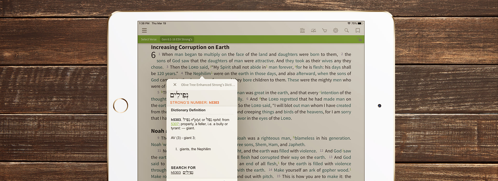 The Hebrew word for nephilim in a Strong's Tagged Bible