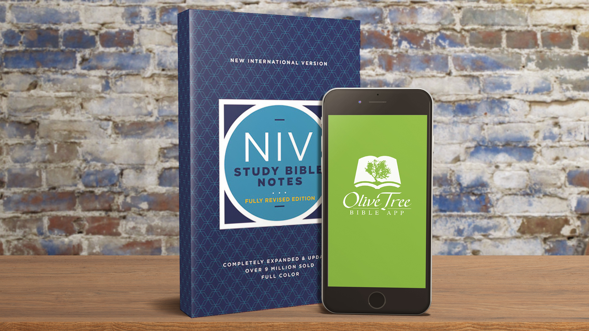 NIV Study Bible Fully Revised
