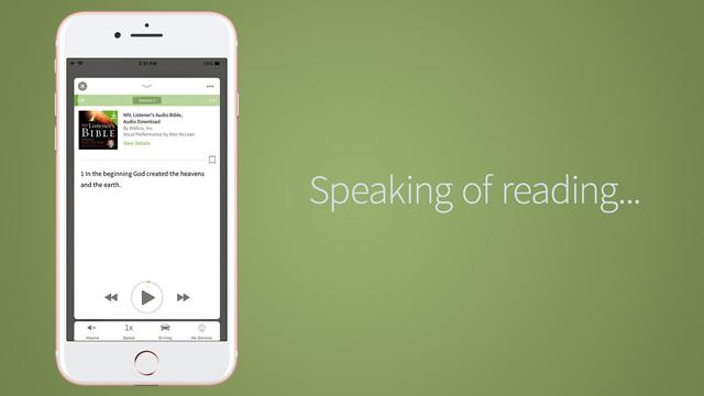 audio bible read along