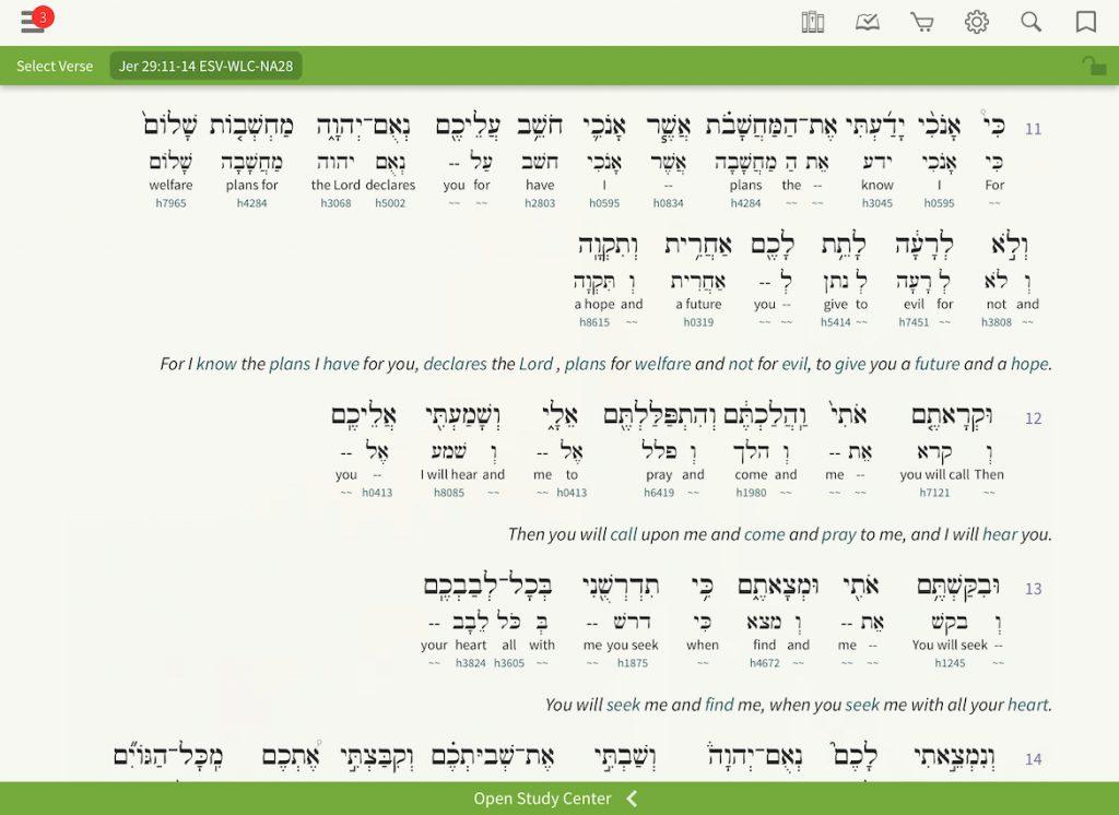 Hebrew Interlinear