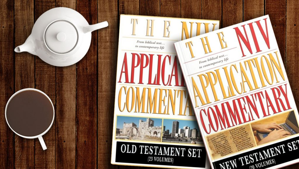 NIV Application Commentary effective ministry