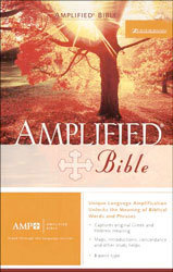 Amplified Bible - AMP 1987 (Includes Translators Notes)