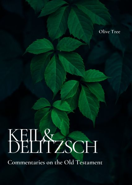 Keil and Delitzsch Commentary on the Old Testament (10 Vols.)