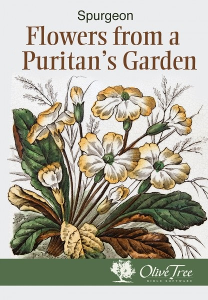 Flowers from a Puritan's Garden