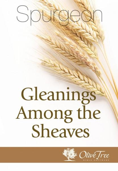 Gleanings Among the Sheaves
