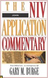 John: NIV Application Commentary (NIVAC)