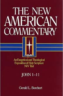 John 1-11: New American Commentary (NAC)
