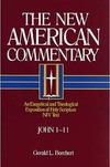 New American Commentary — John 1-11 (NAC)
