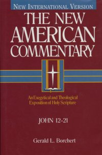 John 12-21: New American Commentary (NAC)