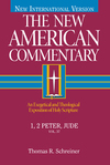 1 & 2 Peter and Jude: New American Commentary (NAC)