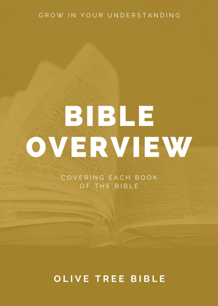 Olive Tree Bible Overview