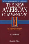 Hebrews: New American Commentary (NAC)