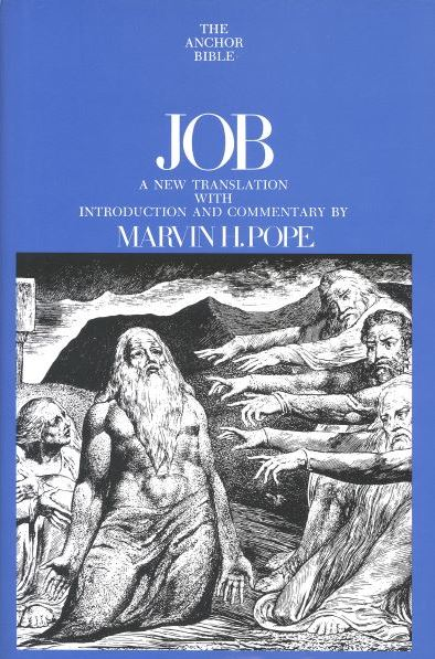 Anchor Yale Bible Commentary: Job
