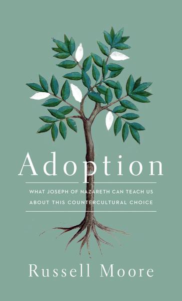 Adoption What Joseph of Nazareth Can Teach Us about This Countercultural Choice
