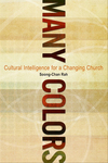 Many Colors: Cultural Intelligence for a Changing Church