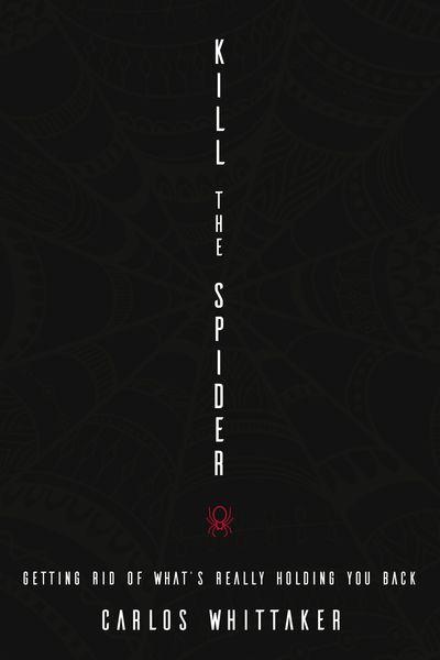 Kill the Spider