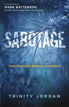 Sabotage: How Insecurity Destroys Everything