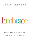 Embrace: God's Radical Shalom for a Divided World