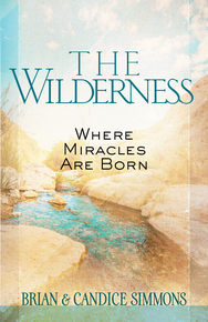 Wilderness - Where Miracles Are Born