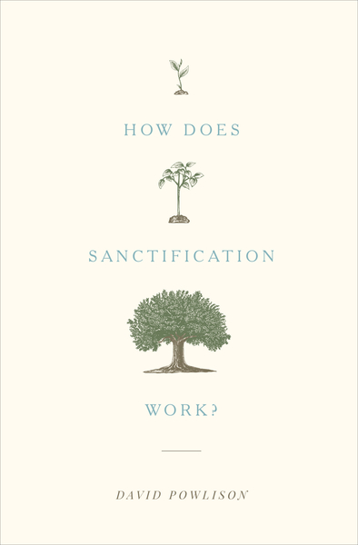 How Does Sanctification Work?