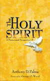 The Holy Spirit: A Pentecostal Perspective