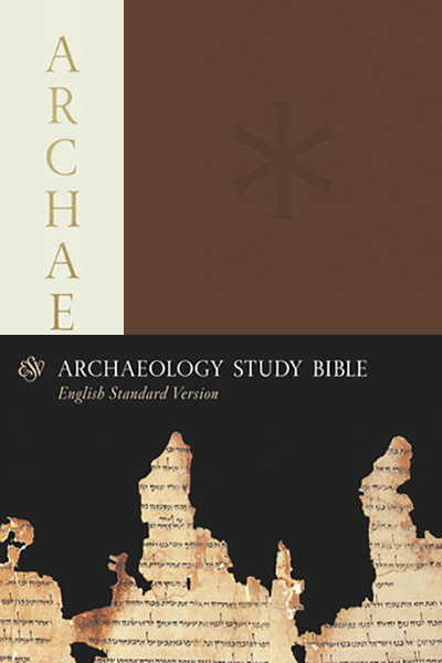 ESV Archaeology Study Bible by John D  Currid and David