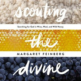 Scouting the Divine by Margaret Feinberg...