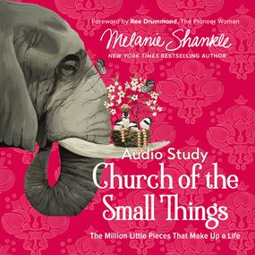 Church of the Small Things: Audio Bible Studies by Karen Lee-Thorp and Melanie Shankle...