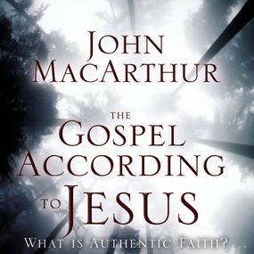 Gospel According to Jesus by Chris Seay, John F. MacArthur and T...