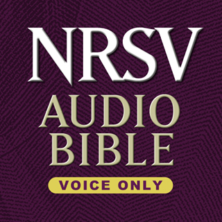 NRSV Audio Bible-Voice Only