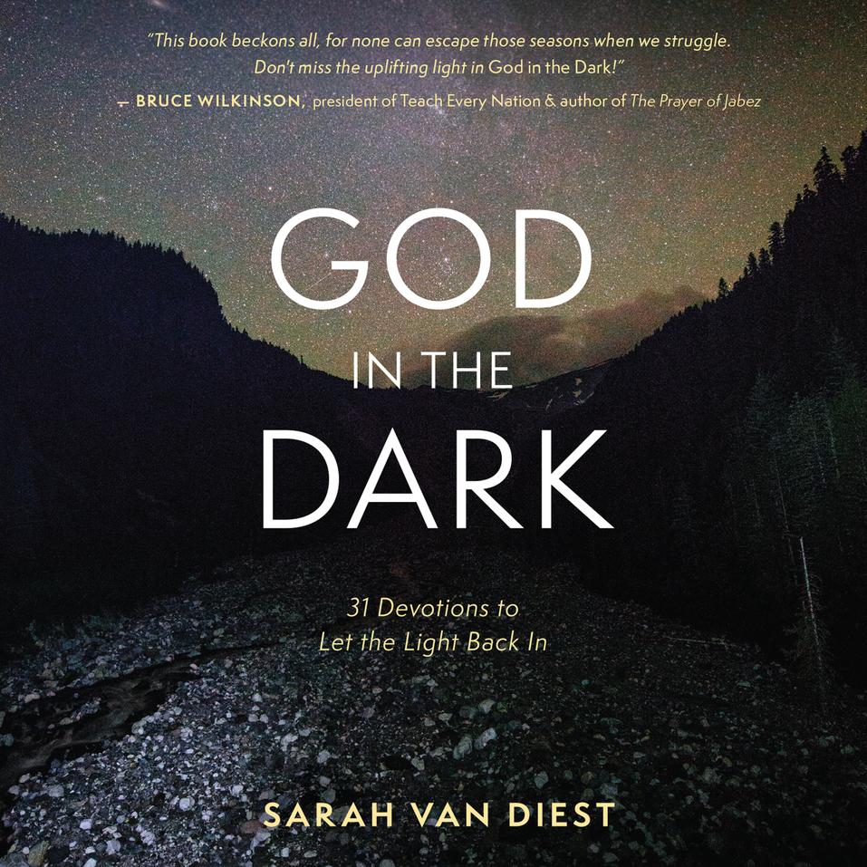 God in the Dark: 31 Devotions to Let the Light Back In by Sarah Van Diest and Nan McNamara...
