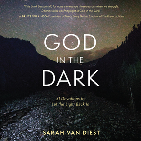 God in the Dark: 31 Devotions to Let the Light Back In by Sarah Van Diest and Nan McNamara...