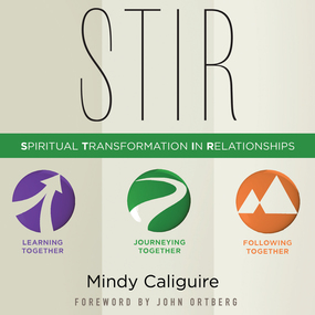 STIR: Spiritual Transformation in Relationships by Mindy Caliguire and Tavia Gilbert...